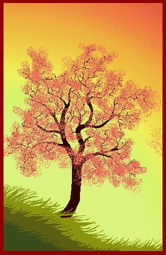 blossomtreemorning