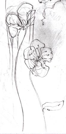 IMG_0005flowers